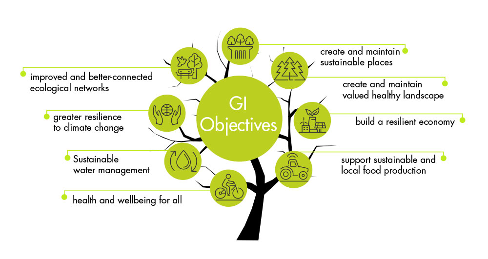 A graphic of a green tree with each of the key objectives of the strategy written around the branches. Strategies are improved and better-connected ecological networks, greater resilience to climate change, sustainable water management, health and wellbeing for all, create and maintain sustainable places, create and maintain valued healthy landscape, support sustainable and local food production, build a resilient economy